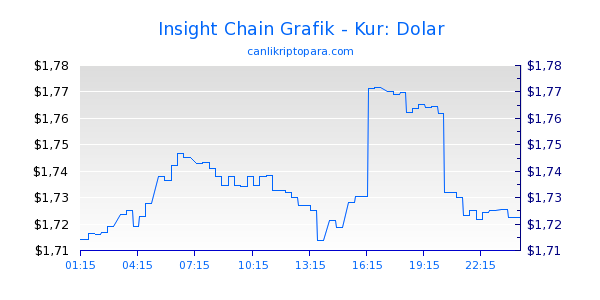 Insight Chain Bugün Grafik